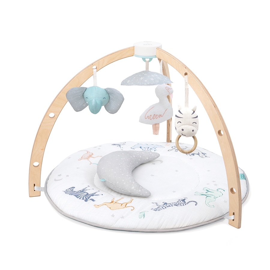 Baby Activity Gym User Manual